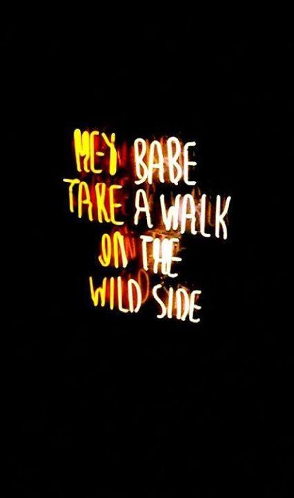 quote_wild